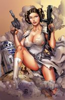 Princess Leia in action by IvannaMatilla