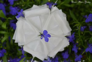 Kusudama by cridiana