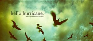 x. Hello Hurricane by iArshi