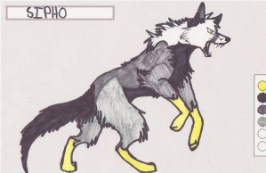 Sipho wolf by kitoridragoness