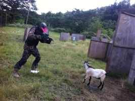 The Day The Goats Died by Almoranas