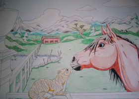 Horse and Cat by GermanDark