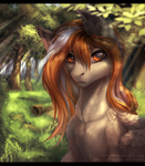 Forest by KeryDarling