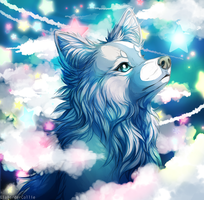 The whole world in her eyes by LiaBorderCollie