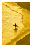 Golden Shores by wolfmagus