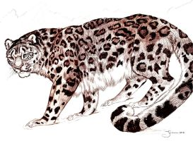 snow leopard by jupiterjenny