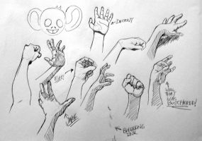 Hand Study 4 by mrcontroversial