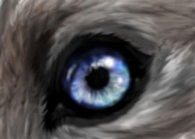 Animal Eye Tutorial by Snotted