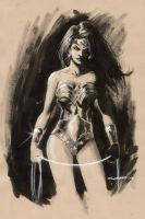 Wonder Woman by Cinar