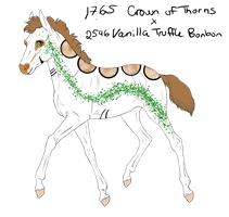 2687 Padro Foal Design for sandym918 by WildOracle