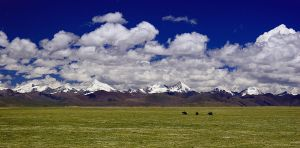 Just a Tibetan Landscape by themobius