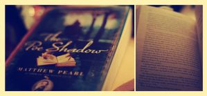 The Poe Shadow by Linnette