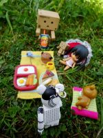 Some picnic in the nature by Hiromi-Sakakibara