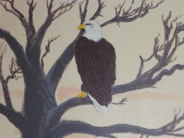 eagle by Black-Hearted-Poet