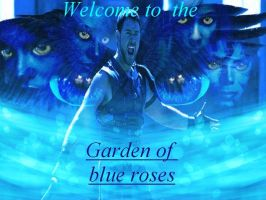 Welcome to the G.O.B.R. by gardenofblueroses