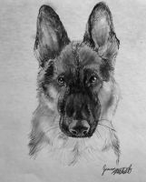Pencil Shepherd by Jaylynessa