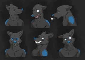 Commission: Tall Tail's Expression Sheet by Temiree