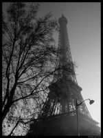 Tower Beyond the Trees by Lilith1985