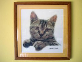 Cross Stitch Cat by vishkey