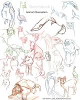 animal sketches by JuliaSculia