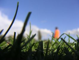Grass Cutter by stealthcow