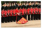 Trooping The Colour - 6 by syphonvector