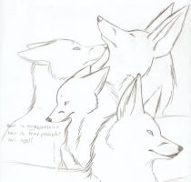Fox Sketches 2 by Joava