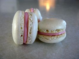 French Macarons by BreeBrains