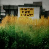 grow your own ideas? by davespertine