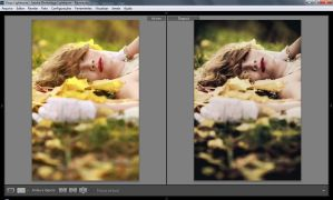 Fairy Tale Dream Lightroom Preset by canalphotoshop