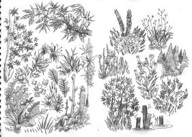 nature.drawings by betteo