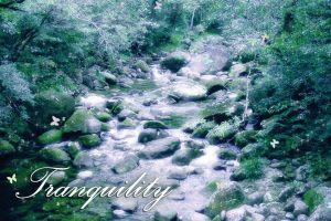 tranquil stream by RZArector
