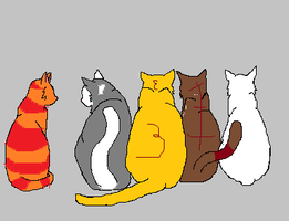 Adoptable Cats #1 by skyclan199