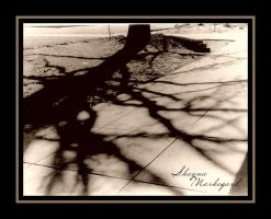 shadow play by milkyway3