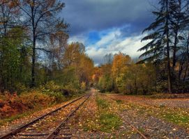 Tracks To Autumn by Violet-Kleinert