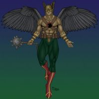 Hawkman - 2008 by Killerbee-Kreations