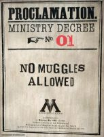 No Muggles Allowed by cersseilanner