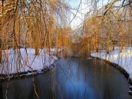 weeping willow by DustMyLemonLies