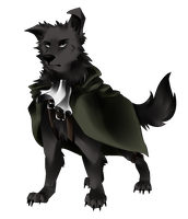 Corporal Rivaille (dog) by nightclaw534