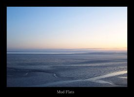 Mud Flats by rcoots