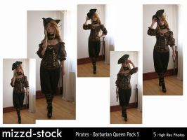 Pirates - Barbarian Queen Pack 5 by mizzd-stock