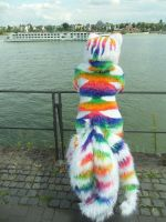 AniMagic '12 - Rainbow on the River by Moeker