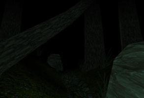 Scary woods by GMer56