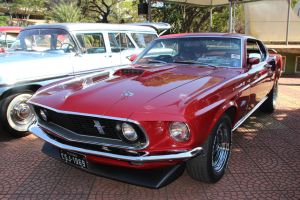 mustang by Henrique-Rozada