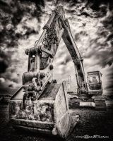 The Big One by artofphotograhy