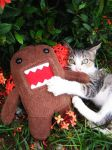 Domo is mine - and mine ONLY by fallenstaragony