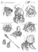 Hermit Crab Pencil Sketches by MIKECORRIERO