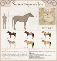 Southern Waywind Horse by Chrysanthi