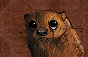 Otterly bored by Shnawp