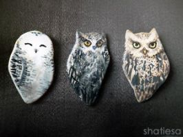 owls by Shatiesa